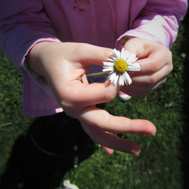 daisy in her hands.