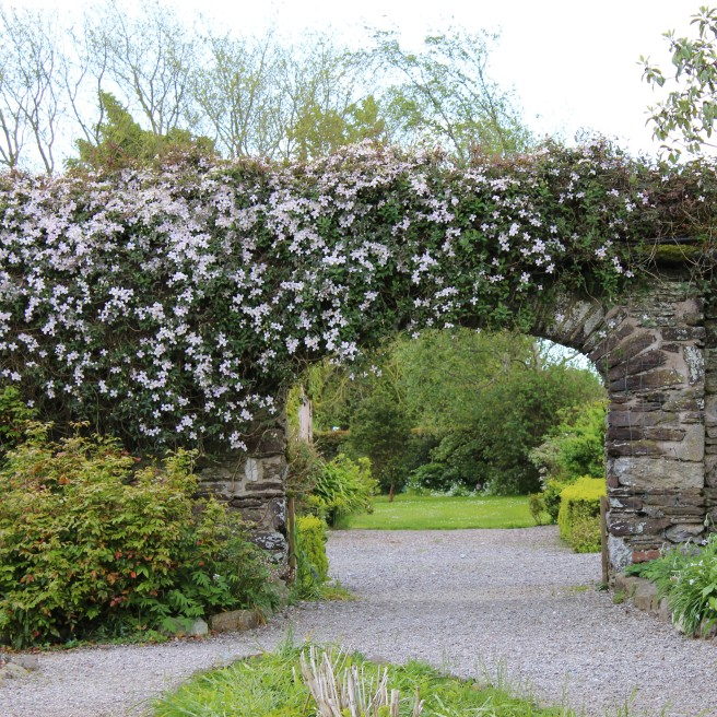 Walled Garden. Ballymaloe House.