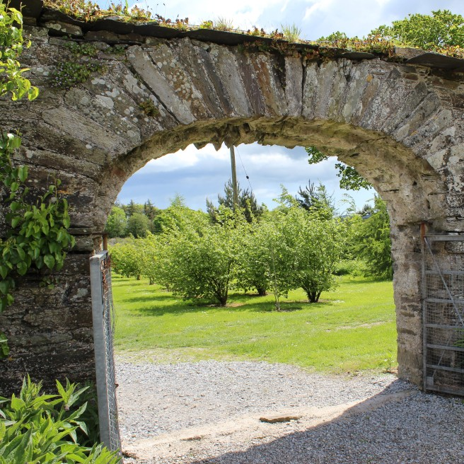 orchard. walled garden. Ballymaloe House.