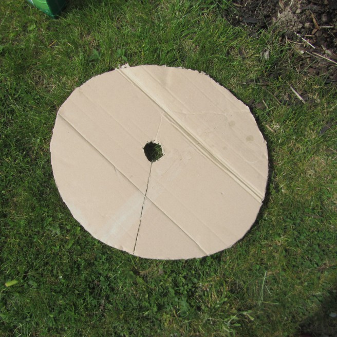 cardboard collar suppresses weeds around young trees