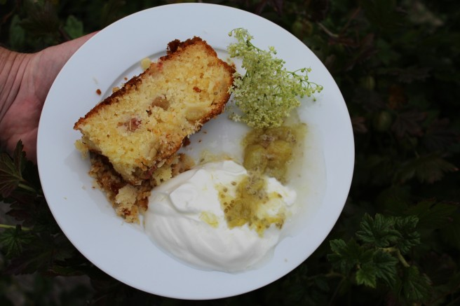 Gooseberry coconut cake with gooseberry and elderflower compote.