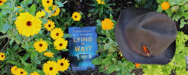 book review of Liz Nugent's latest thriller, Lying in wait.
